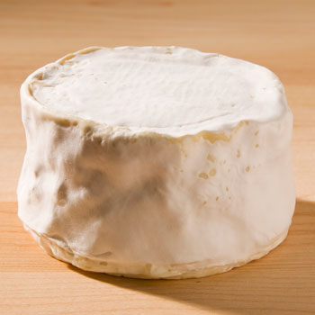 Brillat Savarin - 17oz
