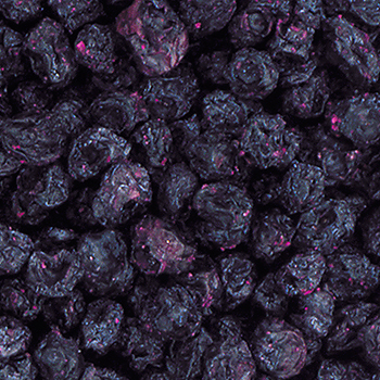 All Natural Dried Blueberry - 8oz, , large
